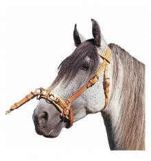 Marjoman dressage bridle lunging cavesson