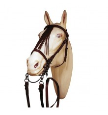 Jerezana bridle with reins