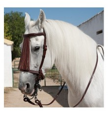 Marjoman spanish leather bridle with reins