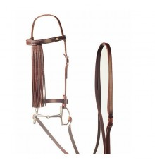 Randonée bridle with reins