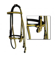 Show bridle with golden gallon