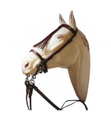 Vaquera bridle, cheap, with reins