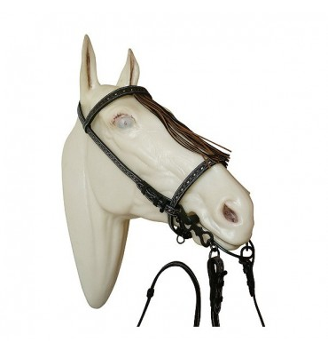 Ornamented vaquera bridle with reins