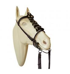 Vaquera Horsehair bridle