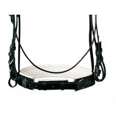 Padded bridle with reins