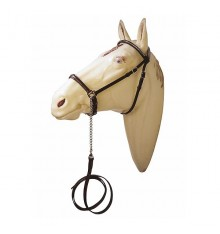 Show Arabian Bridle with metal fittings