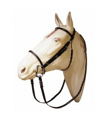 Cheap bridle with reins