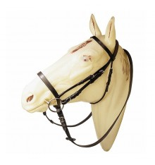 Bridle with browband and noseband with reins