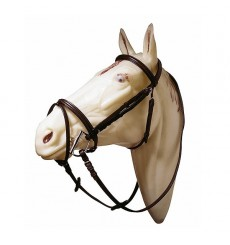 Raised bridle with flash noseband