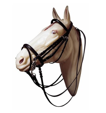 http://saddles4sale.com/246-thickbox_default/weymouth-bridle.jpg