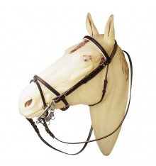 English leather bridle with flash noseband
