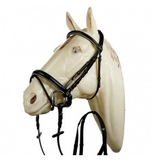 English leather bridle with piping crank flash noseband