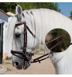Bridle with reins needled
