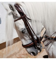 English Leather Bridle sewn round