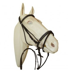 Bridle head strap raised padded browband