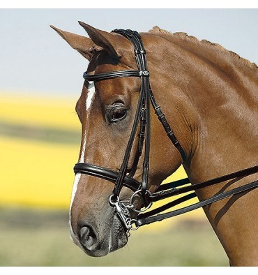 http://saddles4sale.com/453-thickbox_default/bridle-kieffer-ines-double-reins.jpg