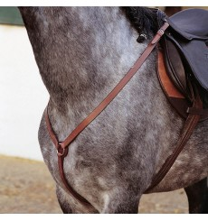 English Breastplate Marjoman Y shape