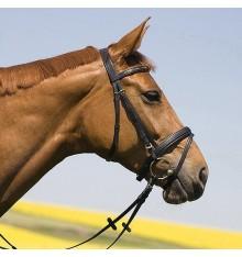 Bridle Pony Kieffer Anastasia