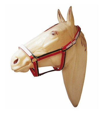 Nylon Bridle Marjoman double leather reinforcement