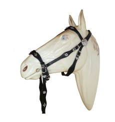 Bitless Bridle Cortesia