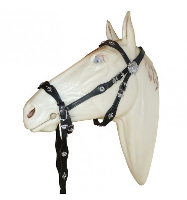 http://saddles4sale.com/861-thickbox_default/bitless-bridle-cortezia.jpg